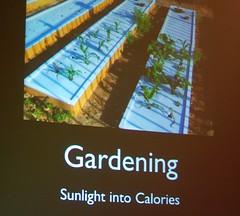 Sunlight into Calories