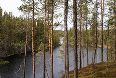 Finnish Lakes And Forest Day Trip From Helsinki