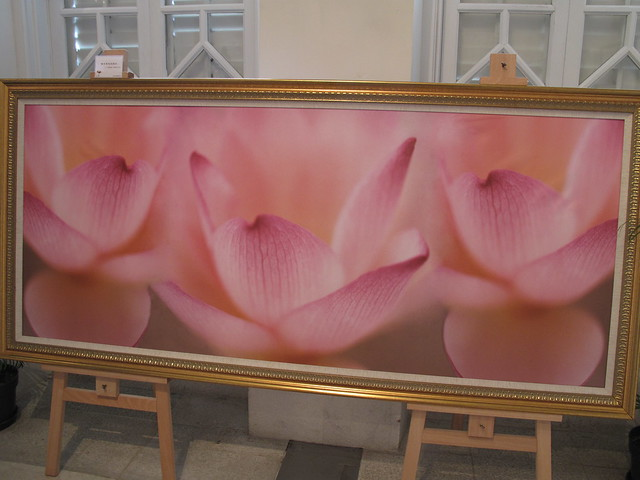 Lotus flower art show in Macau June09