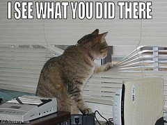 I See What You did There - LOLCats