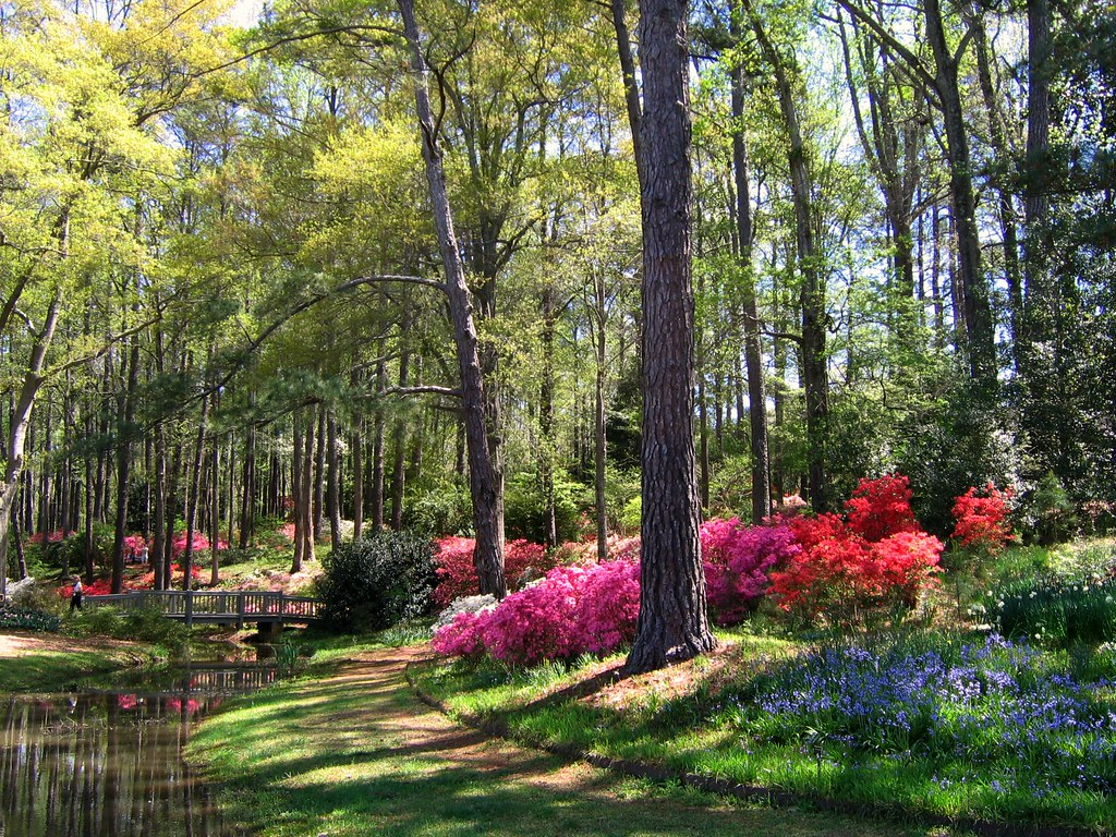 Georgia Garden: Early April In Georgia's Callaway Gardens