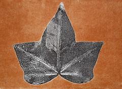 art, symmetry, leaf,