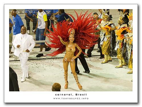 carnival joy / alegría del carnaval