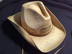 straw(0.0), cap(0.0), brown(1.0), clothing(1.0), fedora(1.0), hat(1.0), cowboy hat(1.0), headgear(1.0),