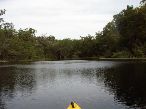 unitedstates florida kayaking ichetuckneeriver fortwhite ichetuckneespringsstatepark 114kmwofjacksonville