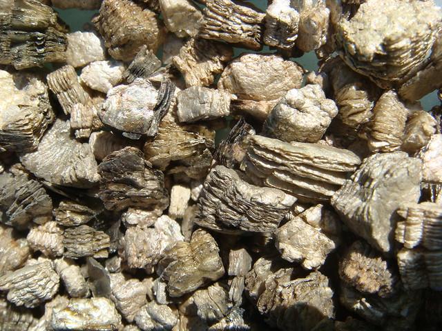 Zonolite Vermiculite Detail Flickr Photo Sharing