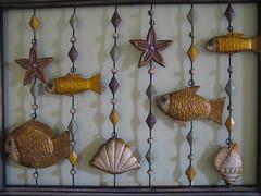 Fish Shells and Shadows