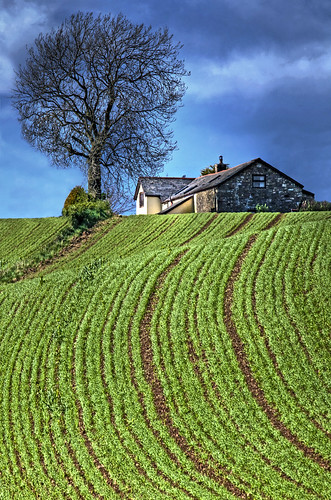 uk tree field wales farmhouse canon landscape eos interestingness raw gallery britain cymru cardiff explore caerdydd 5d hdr wfc ploughed canoneos5d 100400 explored wentloog welshflickrcymru stevegarrington ef100400f45l