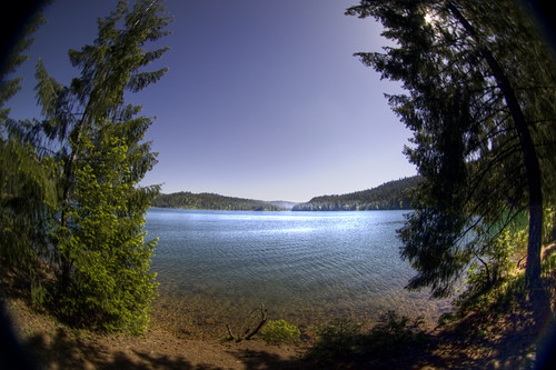 blue trees lake cold nature canon landscape rebel pretty 300d cove fisheye clear pines pollock peleng hollingsworth