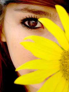 eyeflower.