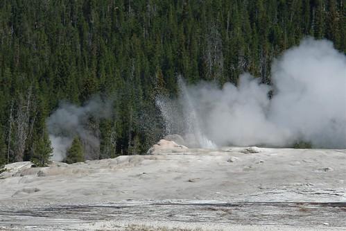 Geyser Old FaithFul en Yellowstone National Park parque nacional yellowstone - 3420340969 2b53de341e - Parque Nacional Yellowstone, cómo visitarlo en dos días