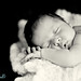 Darbi G. Photography-newborn photographer-CFH-119