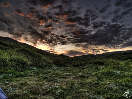 flowers trees red sky sun sunlight mountain color colour green nature grass night clouds sunrise iceland twilight aron hdr ísland