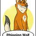 Ethiopian Wolf by felt_tip_felon®