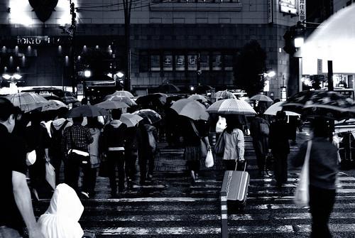 #127 rainy day - 無料写真検索fotoq