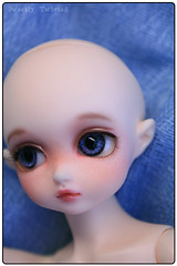 Cherishdoll Beau - face-up