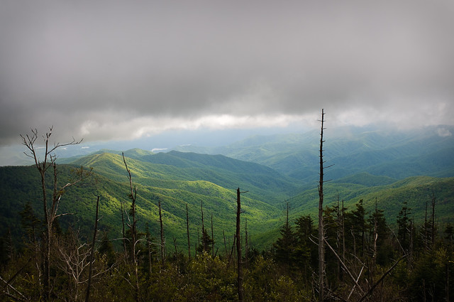 Great Smoky Mountains National Park by CC user bumeister on Flickr