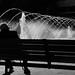 The fountain of youth / La fuente de la juventud by Manuel Atienzar