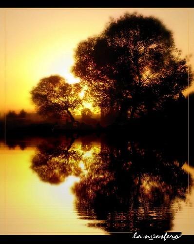light sunset love luz peru water arbol atardecer agua amor paz away perú silence silueta distance far arequipa silencio distancia safary lejania elnoos lambramani —obramaestra— sailsevenseas
