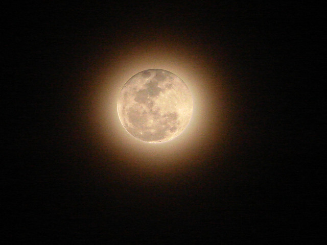Pale Moon | Flickr - Photo Sharing!