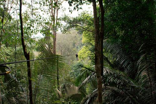 Christian Haugen's photo of zip-lining in Laos.
