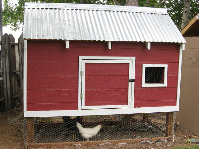Red barn chicken coop flickr photo sharing for Red chicken coop