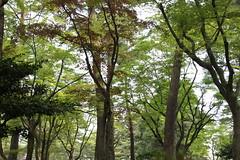 兼六園@石川県金沢市