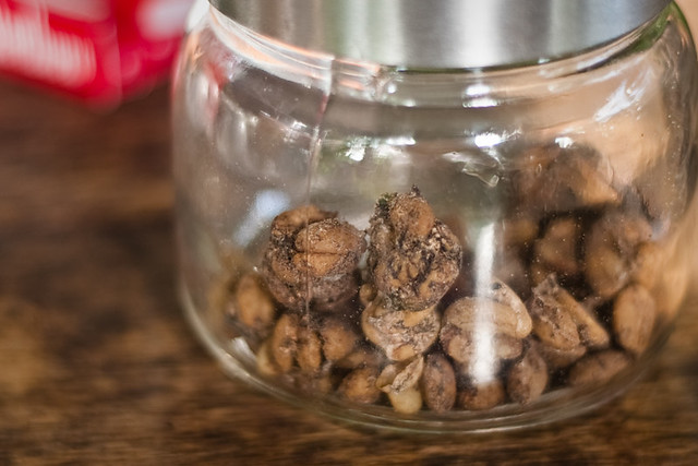 Cat Poop Coffee For Sale Uk