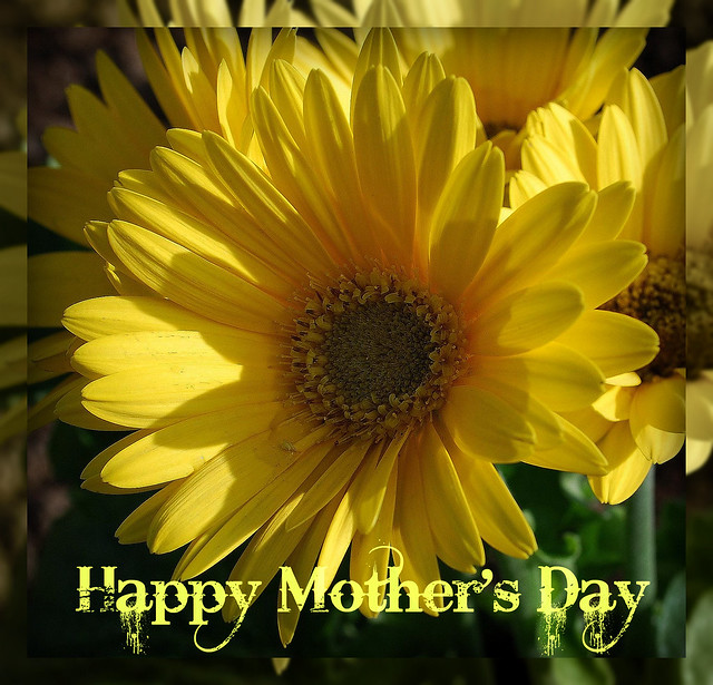 Wishing All the Wonderful Mom's out there A Happy Mother's Day...