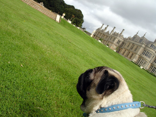 Kirby Hall in Corby, Northants