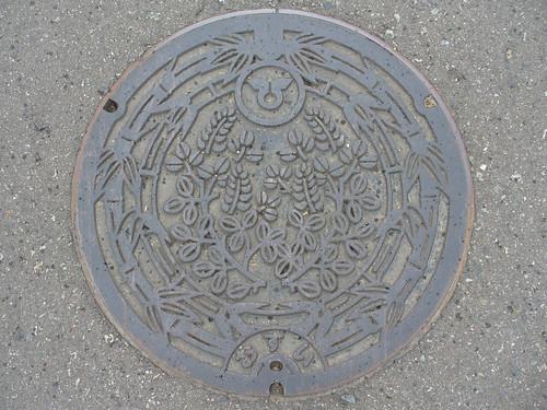 Hidaka town, Wakayama manhole cover(和歌山県日高町のマンホール)