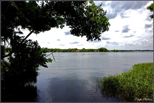 ~ Serenity of Lake Osceola ~