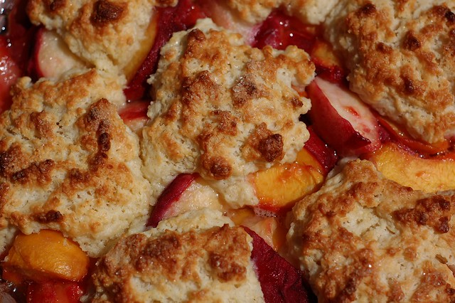 Fresh peach cobbler with biscuit topping
