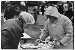 Fish Vendor and Choosy Customer