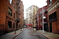 NYC-2011-02-28-753