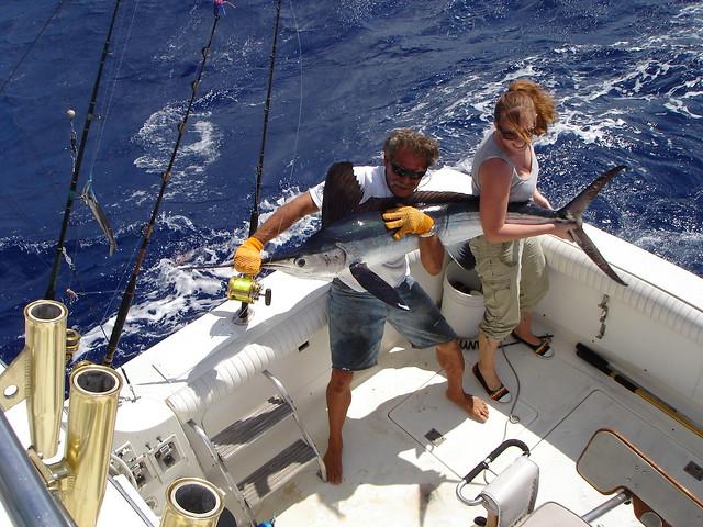 Fishing st thomas st john black pearl sportfishing for Virgin islands fishing