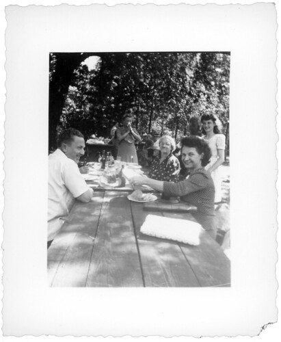 picnic 358