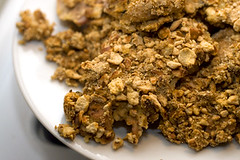 breakfast cereal(0.0), fried food(0.0), oatmeal-raisin cookies(0.0), produce(0.0), muesli(0.0), breakfast(1.0), vegetarian food(1.0), granola(1.0), food(1.0), dish(1.0), dessert(1.0), cereal(1.0), cuisine(1.0), snack food(1.0),