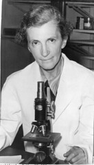 Elizabeth Caroline Crosby (1888-1983), sitting in lab with microscope