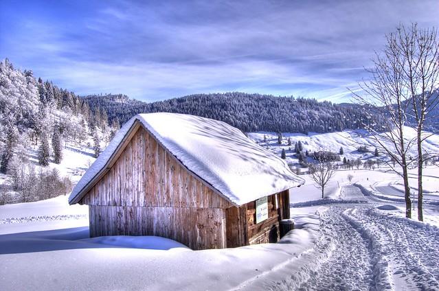 Hütte im Schwarzwald (barn in black forest)