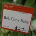 Small photo of Bok Choy Baby