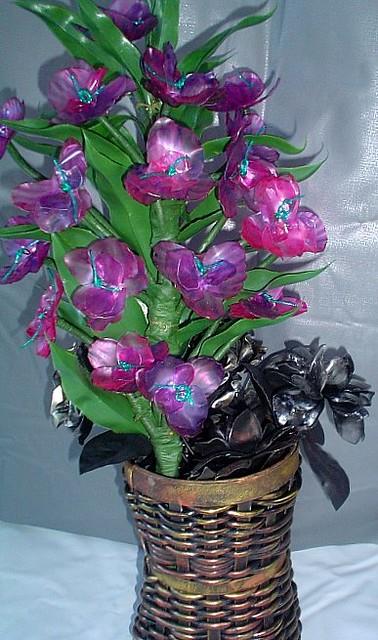 Orquídeas-Vanessa Belisário
