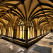 Cloisters - Norwich Cathedral
