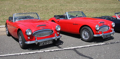 aston martin db2(0.0), ac ace(0.0), ac cobra(0.0), coupã©(0.0), race car(1.0), automobile(1.0), vehicle(1.0), automotive design(1.0), austin-healey 100(1.0), austin-healey 3000(1.0), antique car(1.0), classic car(1.0), vintage car(1.0), land vehicle(1.0), convertible(1.0), sports car(1.0),