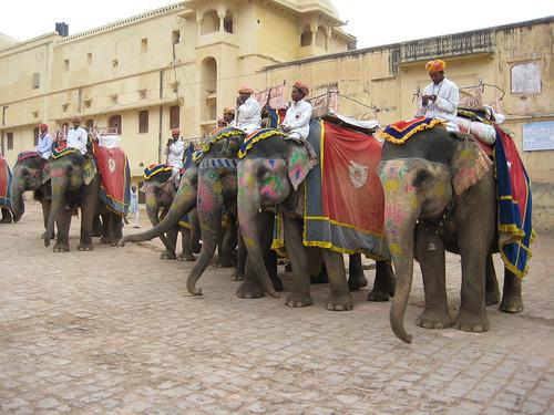 India-Jaipur-01