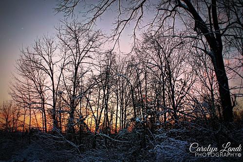 trees winter sunset snow cold landscape scenery colorful pennsylvania snowy seasonal scenic pa picturesque allentown lehighvalley carolynlandi