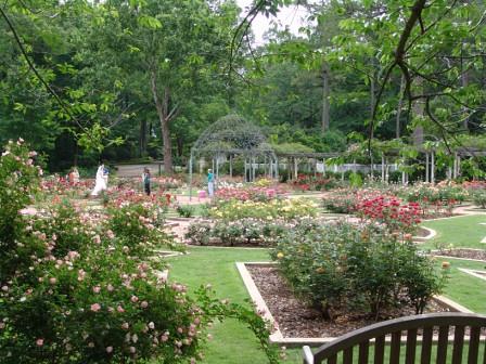 Dunn Formal Rose Garden - Birmingham Botanical Gardens