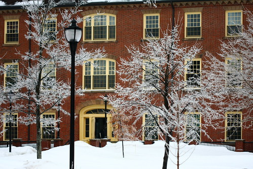 Main Building & Icy Trees