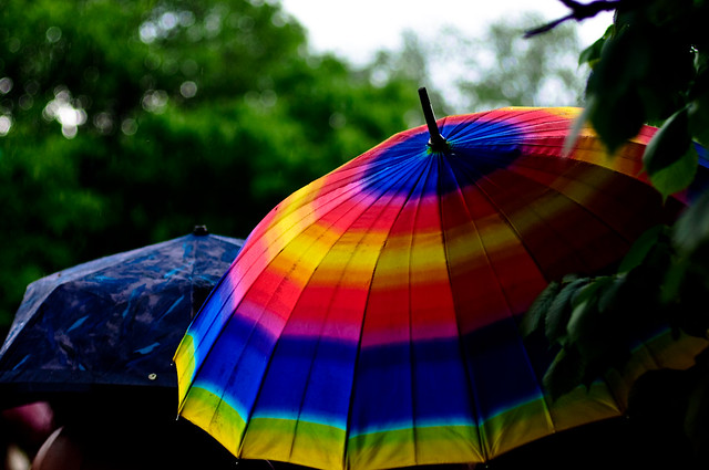 the spring and colorful umbrella