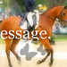 Dressage - by Michelle